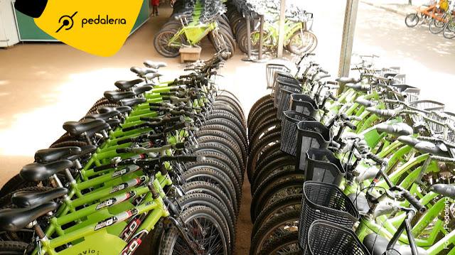 Como alugar uma bicicleta no Ibirapuera