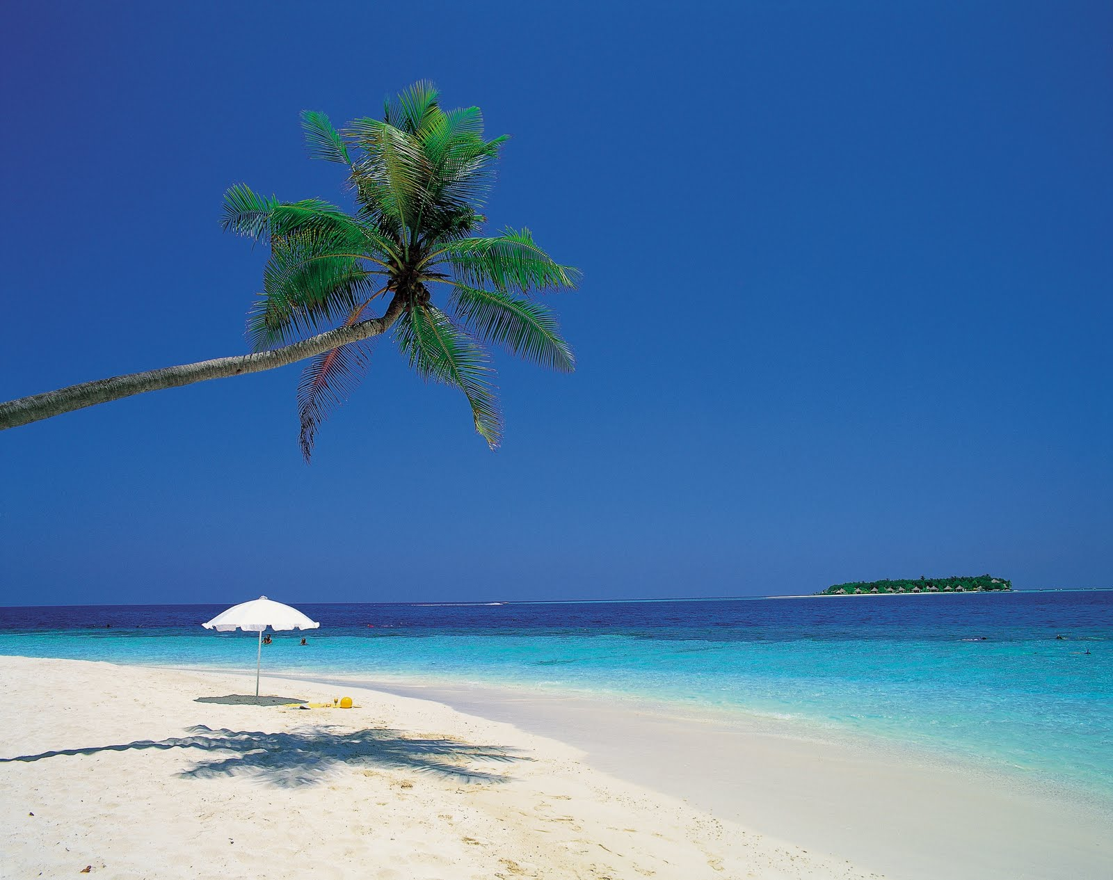 The Free Images Caribbean Beach Wallpaper
