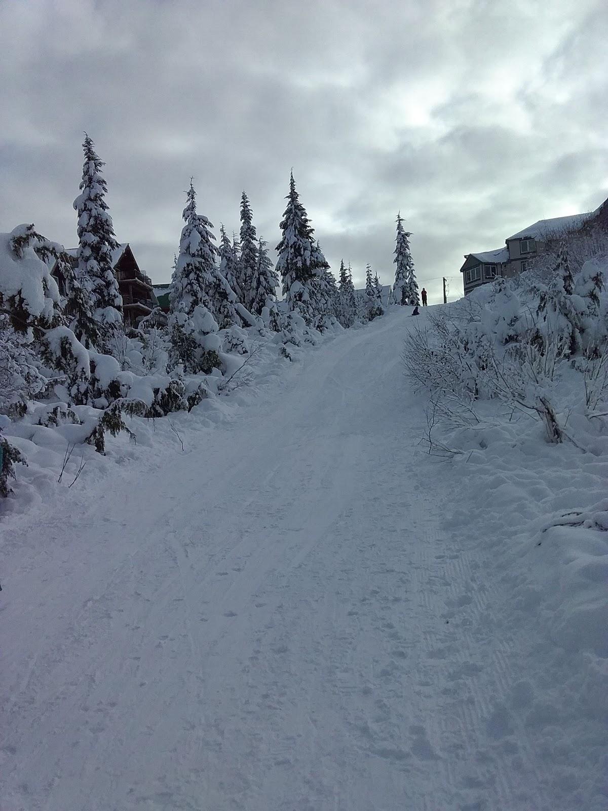 A beautiful Skiing Resort on Mt. Washington Vancouver Island