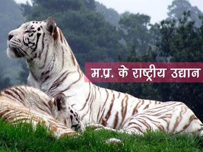 मध्यप्रदेश में राष्ट्रीय उद्यान तथा अभ्यारण्य National Parks and Sanctuaries in Madhya Pradesh