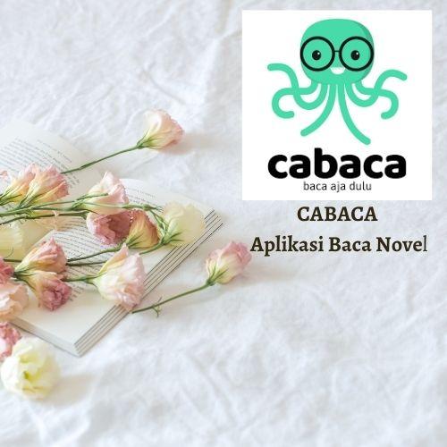 cabaca aplikasi baca novel