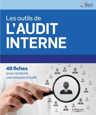 Les outils de l'audit interne: 40 fiches pour conduire une mission d'audit PDF
