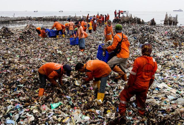 200 petugas dikerahkan bersihkan tumpukan sampah di Kawasan Mangrove Muara Angke