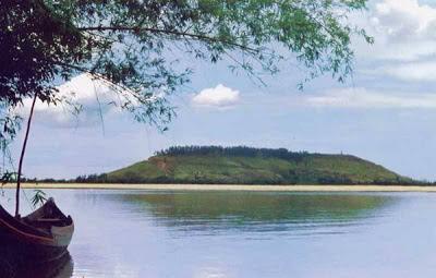 Cá bống sông Trà-
