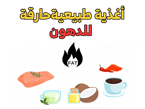 أغذية حارقة للدهون