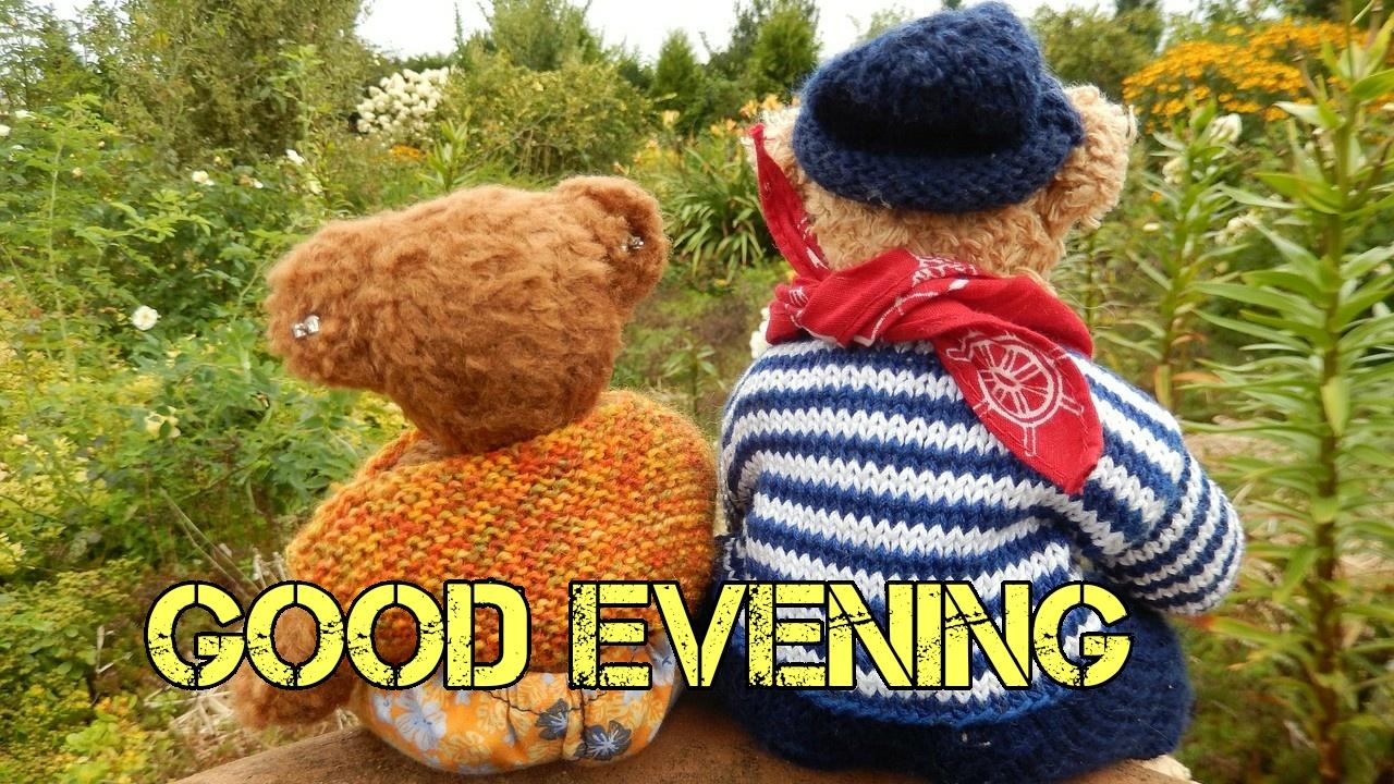 good evening gif