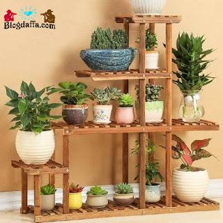 Jenis-jenis tanaman hias dengan harga termahal di Indonesia maupun di dunia.