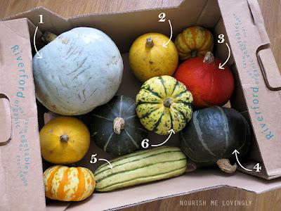 squash_box