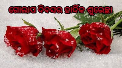 Happy rose day odia wishes
