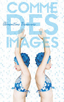 http://perfect-readings.blogspot.fr/2014/08/clementine-beauvais-comme-des-images.html
