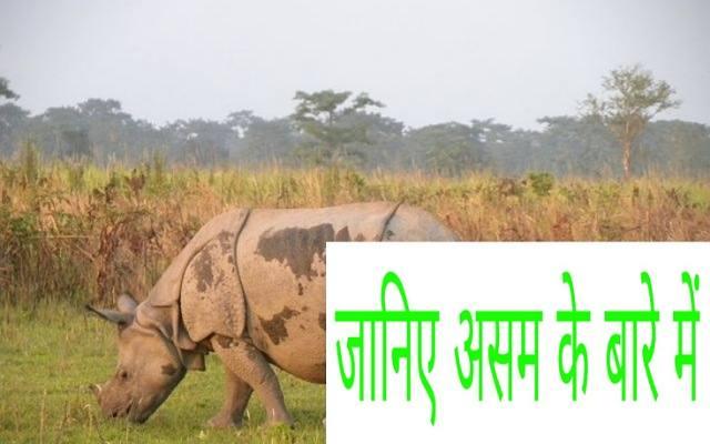 About Assam