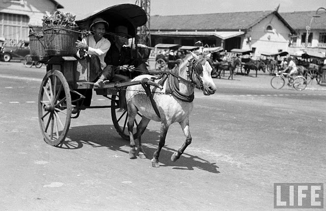 Old Photos Of Horse-carts On The Streets Of Saigon