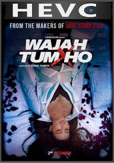 Wajah Tum Ho 2016 Hindi 190MB DVDRip HEVC Mobile ESubs