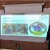 Quim Solé, estudiant de Batxillerat del INS Torrevicens ha presentat el seu TDR PERA sobre coets d'aigua