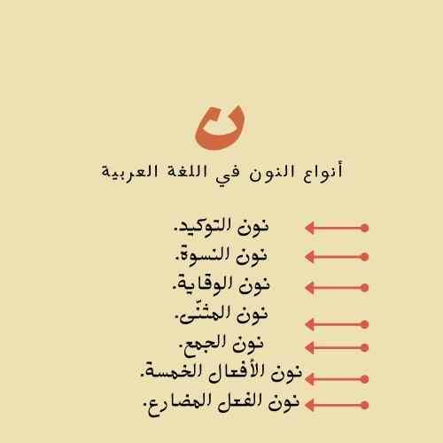 أنواع النون في اللغة العربية