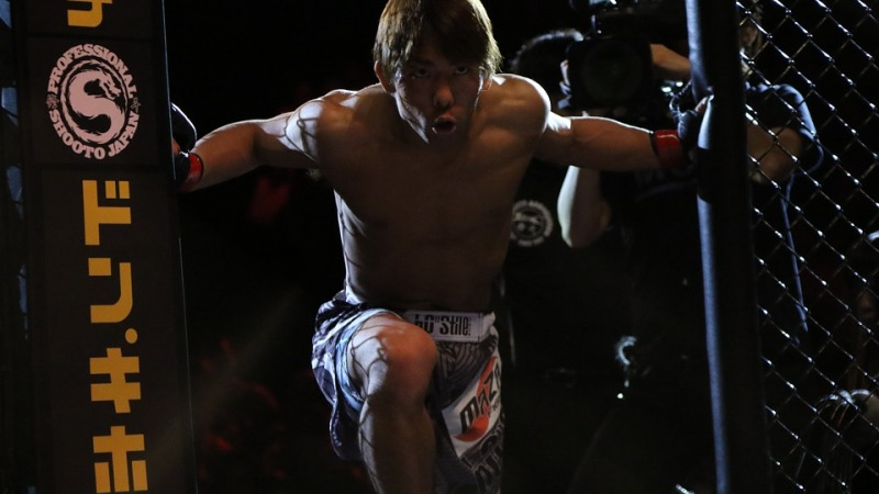 UFC Betting Tips: How to Profit from Your First Bet