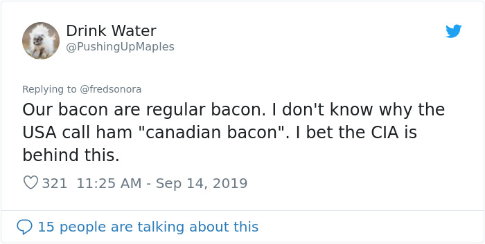 This Girl Fights Back Someone Who Attacks Canada On Twitter