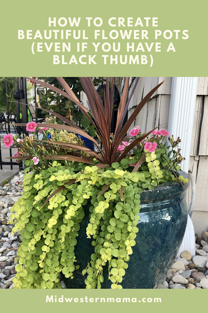 Container Gardening:  How to create beautiful flower pots with the Thriller, Spiller, Filler method!  Midwestern Mama #containergardening #flowerpots #annuals #flowers