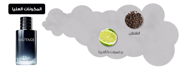 سعر عطر سوفاج من ديور ومكوناته وتاريخ اصداره