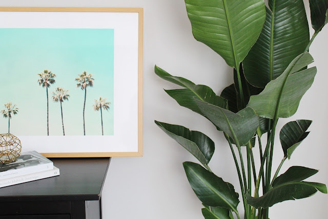 palm tree print framed, how to do banana leaf plant indoors, decorating beach bedroom
