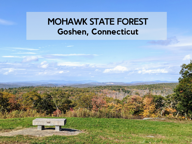 Mohawk State Forest Foliage Drive