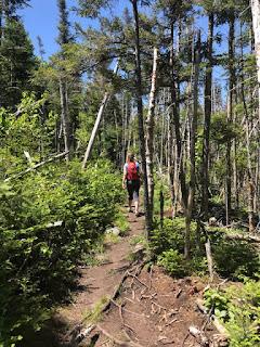 Bald Peak Spur Trail