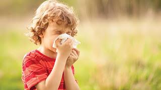 Çocuklar için Polen Alerjisi ile ilgili aramalar bebeklerde bahar alerjisi belirtisi  bebeklerde bahar alerjisi nasıl geçer  bebeklerde mevsimsel alerji belirtileri  bahar alerjisi ilaçları  bebeklerde bahar nezlesi nasıl geçer  toz ve polen alerjisi  bahar alerjisi çözüm  bahar alerjisi hangi doktor