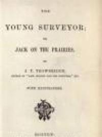 The Young Surveyor