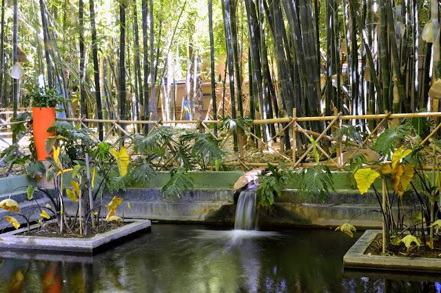 Le Jardin Majorelle, un havre de paix au milieu de la ville rouge