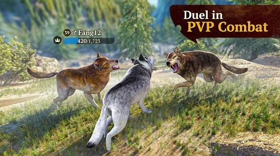 Duel in PVP Combat