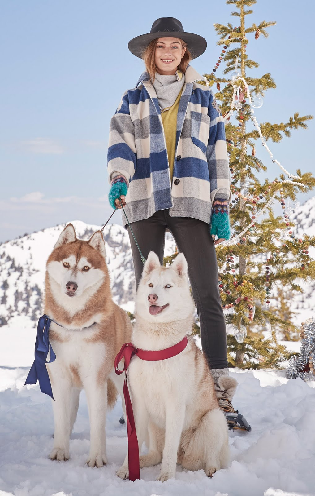 dogs of sundance catalog from arctic rescue