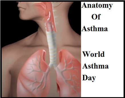 Asthma On The Rise: These 5+ Things Should Not Be Eaten