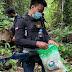 Bea Cukai Jayapura Gandeng TNI-AD Patroli Di Wilayah Perbatasan RI-PNG