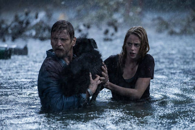Crawl Alexandre Aja Kaya Scodelario Barry Pepper chien