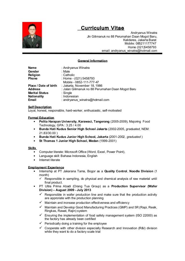 contoh cv bahasa inggris pdf ben