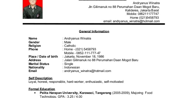 contoh resume jururawat dalam bahasa inggris