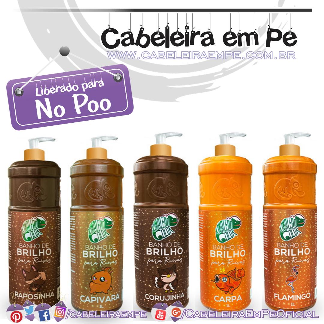 Banho de Brilho (Corujinha, Carpa, Capivara, Rapozinha e Flamingo) - Kamaleão Color (No Poo)