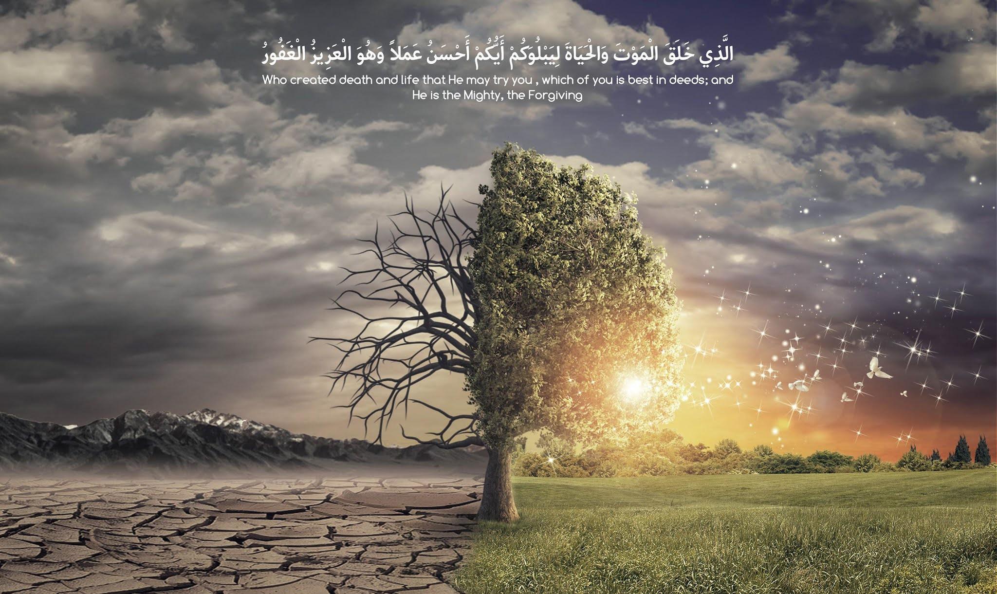 """Hayat ve Ölüm """"Her nefis ölümü tadacaktır."""" (Ali İmran 185)"""