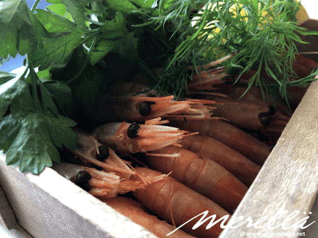 Happy Lobster Silja Serenade kokemuksia