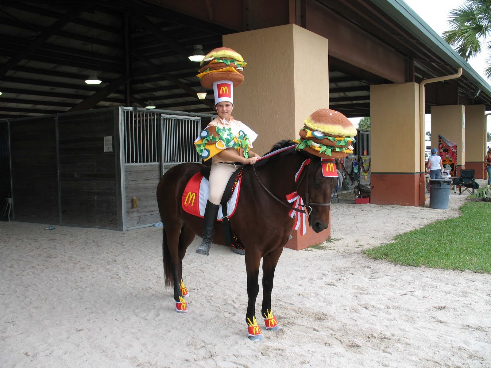 Top 10 Amazing Horse and Rider Costume Ideas |Horse Fancy Dress Costumes