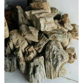 Batu fosil untuk hiasan aqua scape