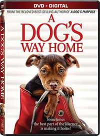 A Dog's Way Home 2019 Full Hindi - Eng - Telugu - Tamil Movies Download
