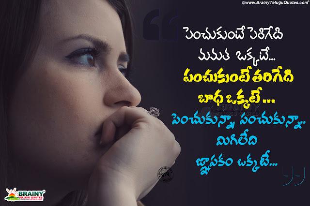 telugu life quotes, motivational words in life, realistic life words in telugu, best life quotes in telugu