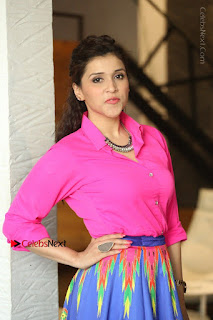 Actress Mannar Chopra in Pink Top and Blue Skirt at Rogue movie Interview  0017.JPG