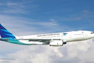 Burung Kacer Seharga Rp 150 Juta Hilang di Bagasi Pesawat Garuda