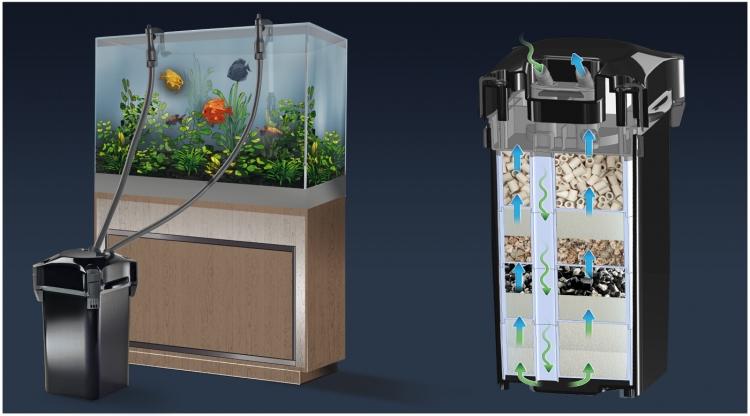 Tìm hiểu lọc thùng dùng cho bể thủy sinh, bể cá cảnh