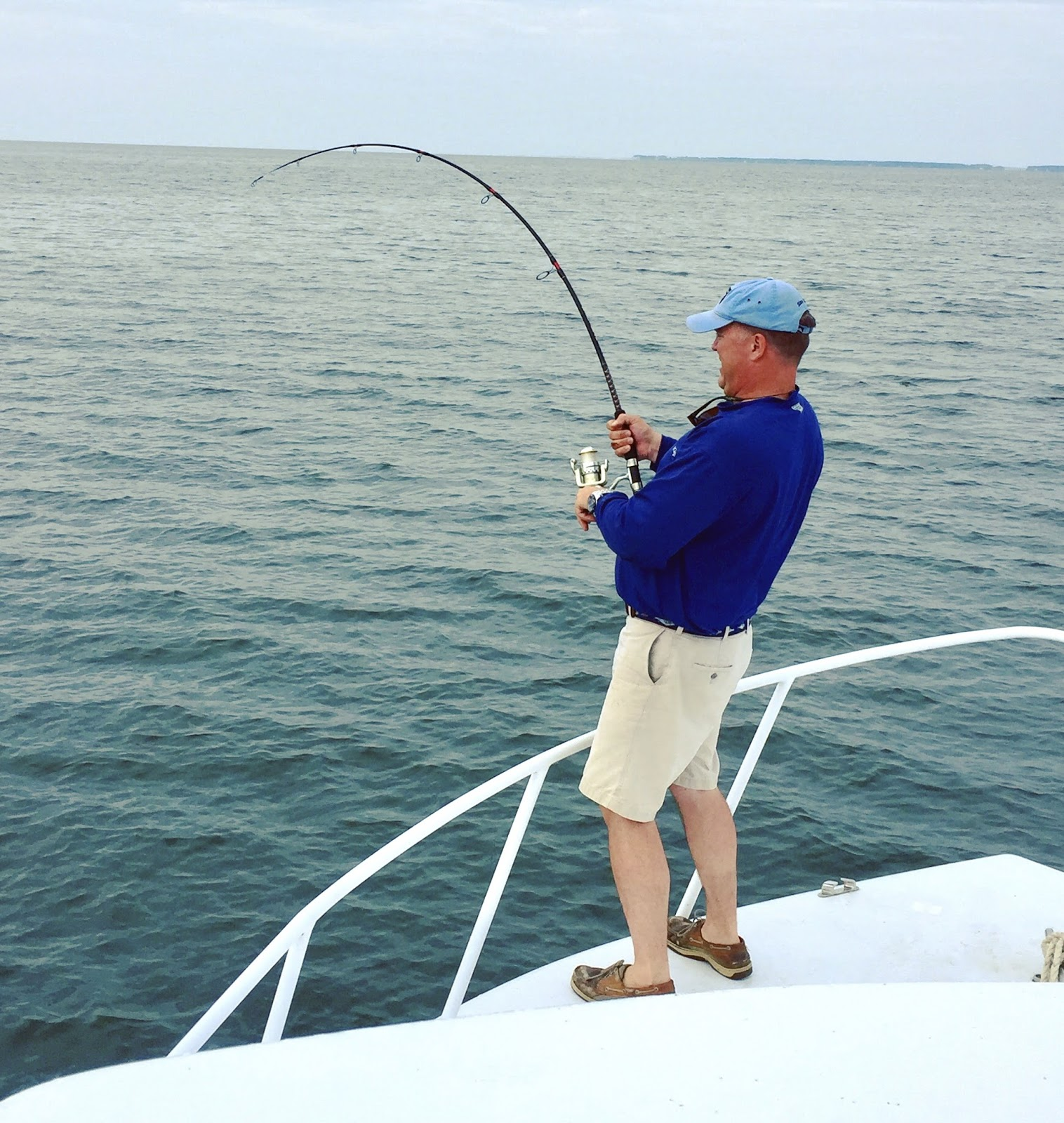 Southern Tide Guide Service Fishing Report Cobia Are Here