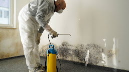 An 8-Step Guide For Water Damage Restoration And Cleanup