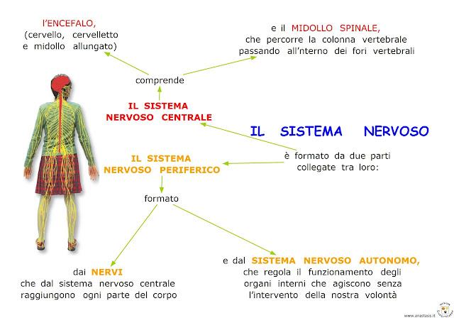 Paradiso Delle Mappe: Febbraio 2013