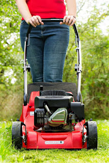 Country Fair Blog Party Blue Ribbon Winner: Oak Hill Homestead's I Hate Mowing the Yard